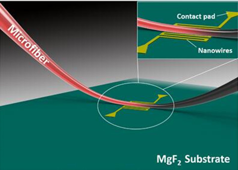 上海微系统所成功研制微纳光纤耦合超导纳米线单光子探测器
