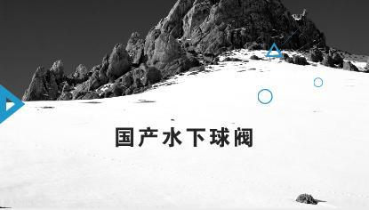 文昌9-2/9-3/10-3气田群工程项目组,海油工程股份有限公司与生产厂家