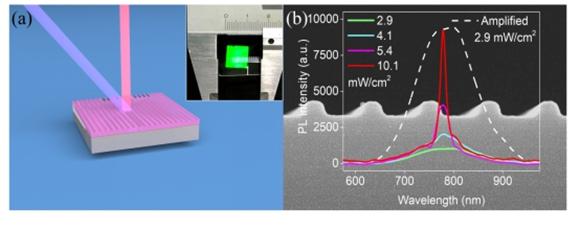 复旦大学成功研制出世界上首个全硅激光器