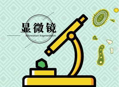 扫描电子显微镜技术日益精进 市场规模加速扩大