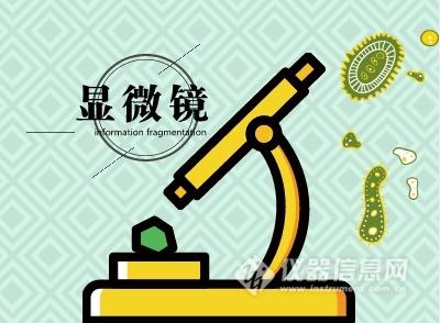 扫描电镜技术日益精进 市场规模加速扩大