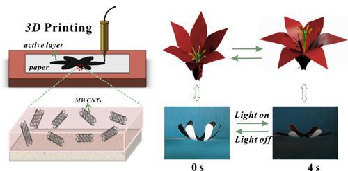 兰州化物所3D打印纸基光热可逆驱动器件研究获进展