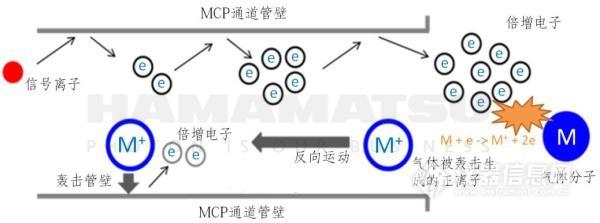 仪表知识滨松新型三级结构MCP,解决小质谱仪低