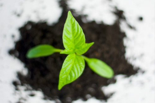 首部土壤污染防治法出台 土壤监测仪器仪表将迎巨大需求