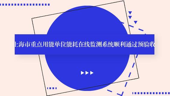 上海市重点用能单位能耗在线监测系统顺利通过预验收