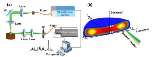 光纤传能激光诱导等离子体光谱检测研究获新进展