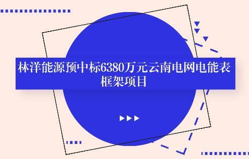 林洋能源预中标6380万元云南电网电能表框架项目