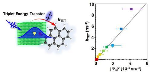 大连化物所纳米晶三线态能量转移动力学研究取得新进展