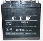 CTD蓄电池6GFM38(12V,38AH)参数电力设备报价