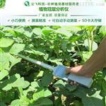 植物冠层分析仪厂家批发  云飞科技 植物冠层分析仪价格优惠