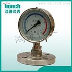 定制YTP-100B隔膜壓力表 專業測壓力 (鴻謙儀表)