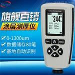 速为SW1300两用涂层测厚仪 镀锌油漆铁基漆膜厚度测量仪