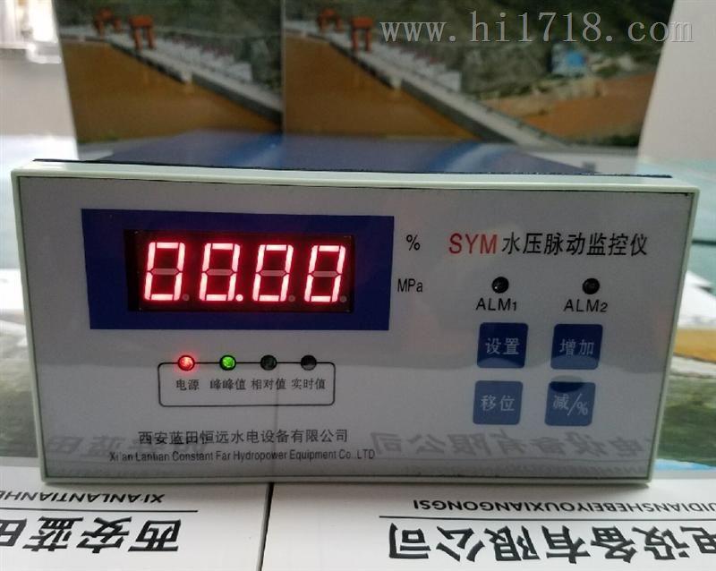 专业定做SYM水压脉动监控装置【绿盛】