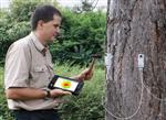 德国进口ARBOTOM树木断层检测仪