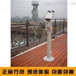 台湾原装GINTANG投币望远镜,30倍双筒观景观鸟投币望远镜