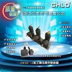 真空断路ZW32-12/630-20 川龙电气厂家正品