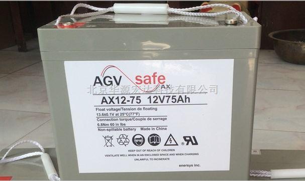 英国霍克蓄电池AX12-100报价/参数