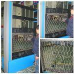 微机控制5吨安全网性能检测试验机UTM5105