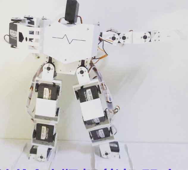 17自由度人形机器人