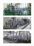 实验型果汁饮料生产线设备