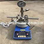 微型高压反应釜 催化微型高压反应器