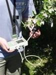 葉綠素熒光儀Hy PEA