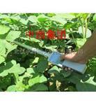 植物冠層分析儀 型號:LB06-TOP-1000