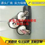 安徽永昌伴热采样管 伴热管缆TH2200-D38-FEP2*φ8*6-Bb-pt100-pvc