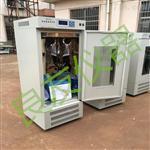 MJX- 160-Ⅲ霉菌培養箱生產廠家