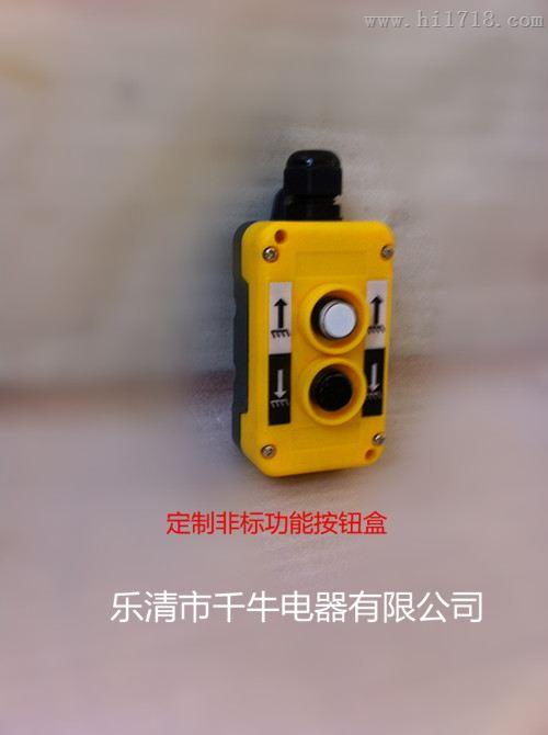 液压按钮盒汽车尾板货车尾板液压泵站自锁式多功能高档工控开关