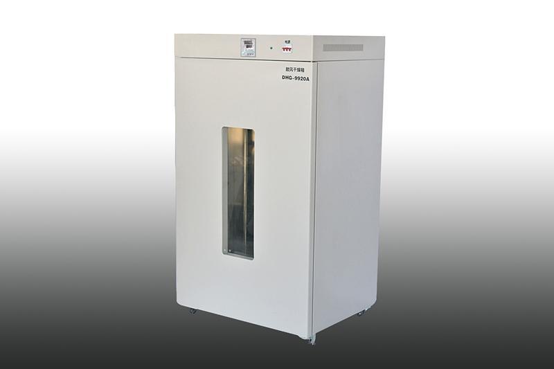 立式鼓风干燥箱DHG-9920A(1000L)