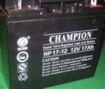 冠军蓄电池NP17-12,报价、参数见详细说明12V17AH