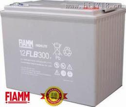 蓄电池 12FLB300 非凡蓄电池直销中心