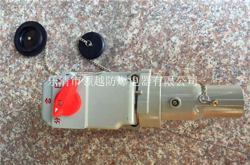 BCD54-16A/220防爆插接装置(带总开关)