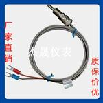 WZPT-01壓簧熱電阻 帶補償導線三線四線制