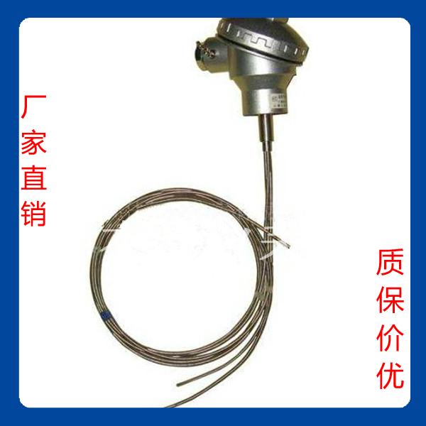 PT100多点测温热电阻 高温型