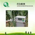 河南云飛科技植物光合作用測定儀廠家直銷 價格優惠