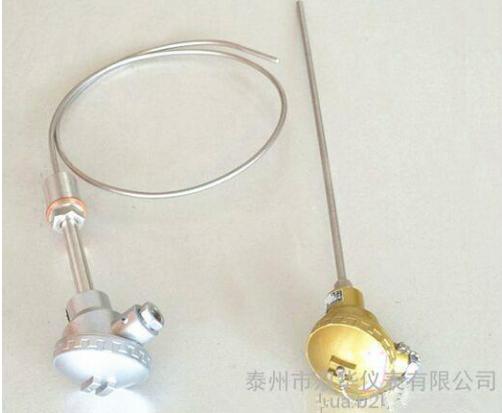 泰州铠装热电偶厂家供应WRNK-131热电偶