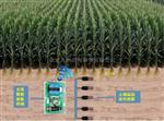 土壤墑情在線監測系統