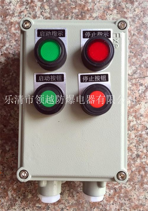 变频器防爆控制按钮盒