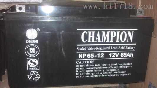 广州CHAMPION冠军蓄电池NP100-12
