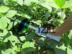 北京FS-PAR植物冠層分析儀