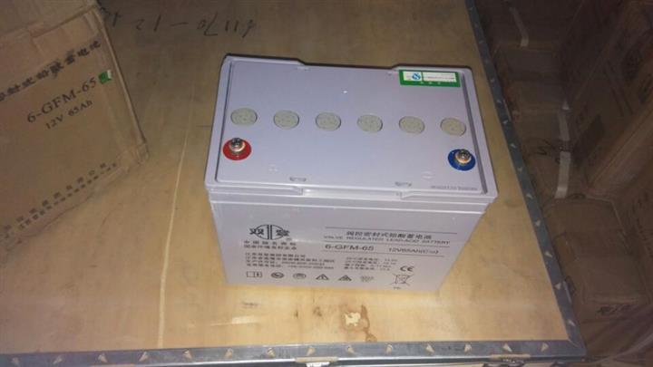 双登蓄电池6-GFM-65 12V65AH规格参数