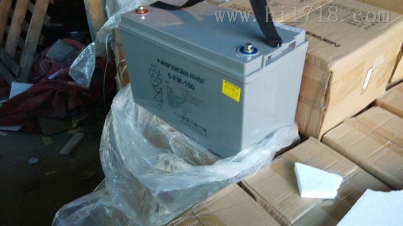 南都蓄电池6-fm-100 规格报价