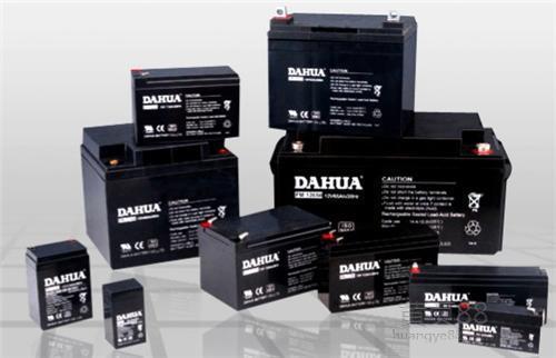 DAHUA蓄电池