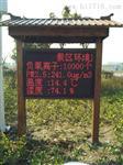 景区公园空气负氧离子实时监测仪 旅游度假村环境监测设备
