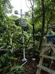 景区负离子在线自动监测系统 含氧量 pm2.5温湿度实时监测