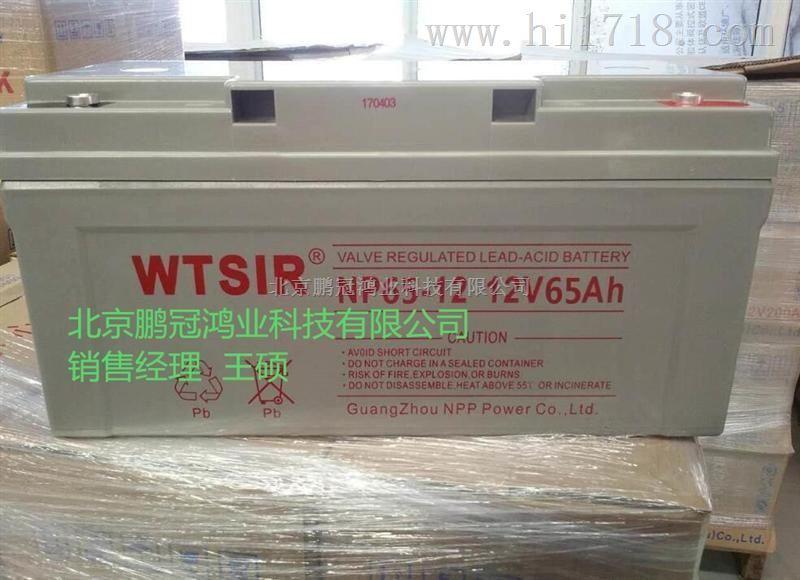 WTSIR蓄电池NP65-12价格、规格