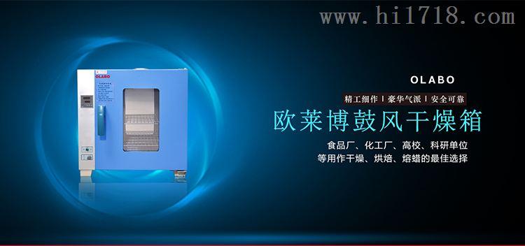 电热恒温鼓风干燥箱价格优惠