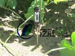 石家庄TP101针式土壤温度计